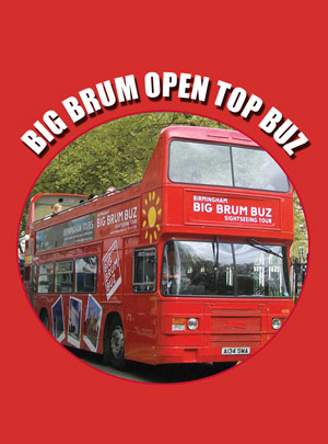 big brum bus book cover