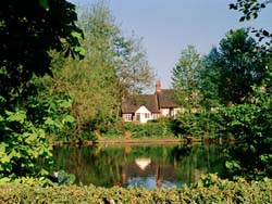 view of the pool in the midst of the moor pool area of Harborne