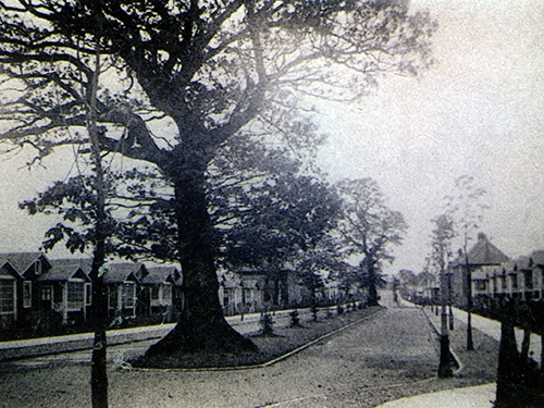 early view of central avenue